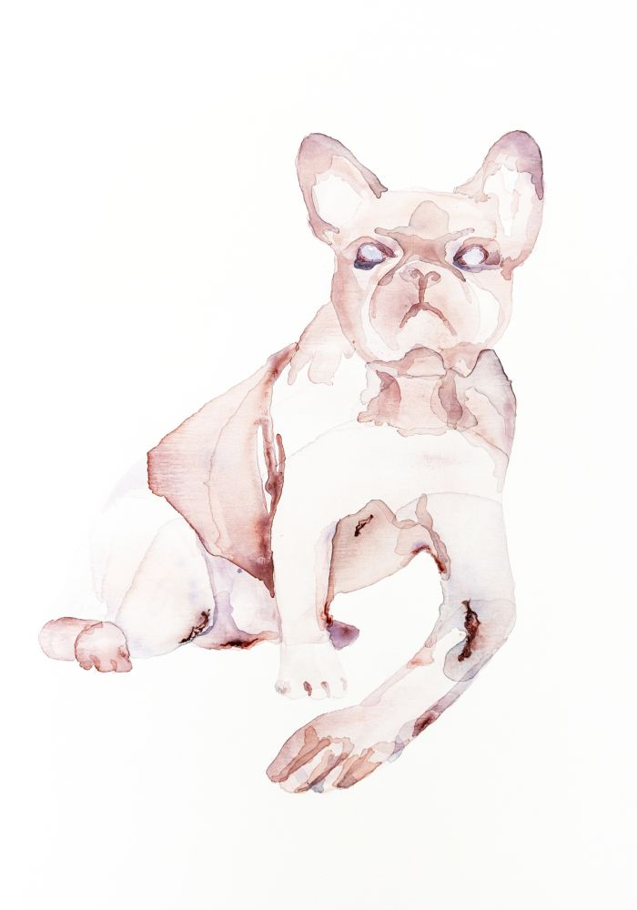 Anna Nemes: Bulldog With Human Arms