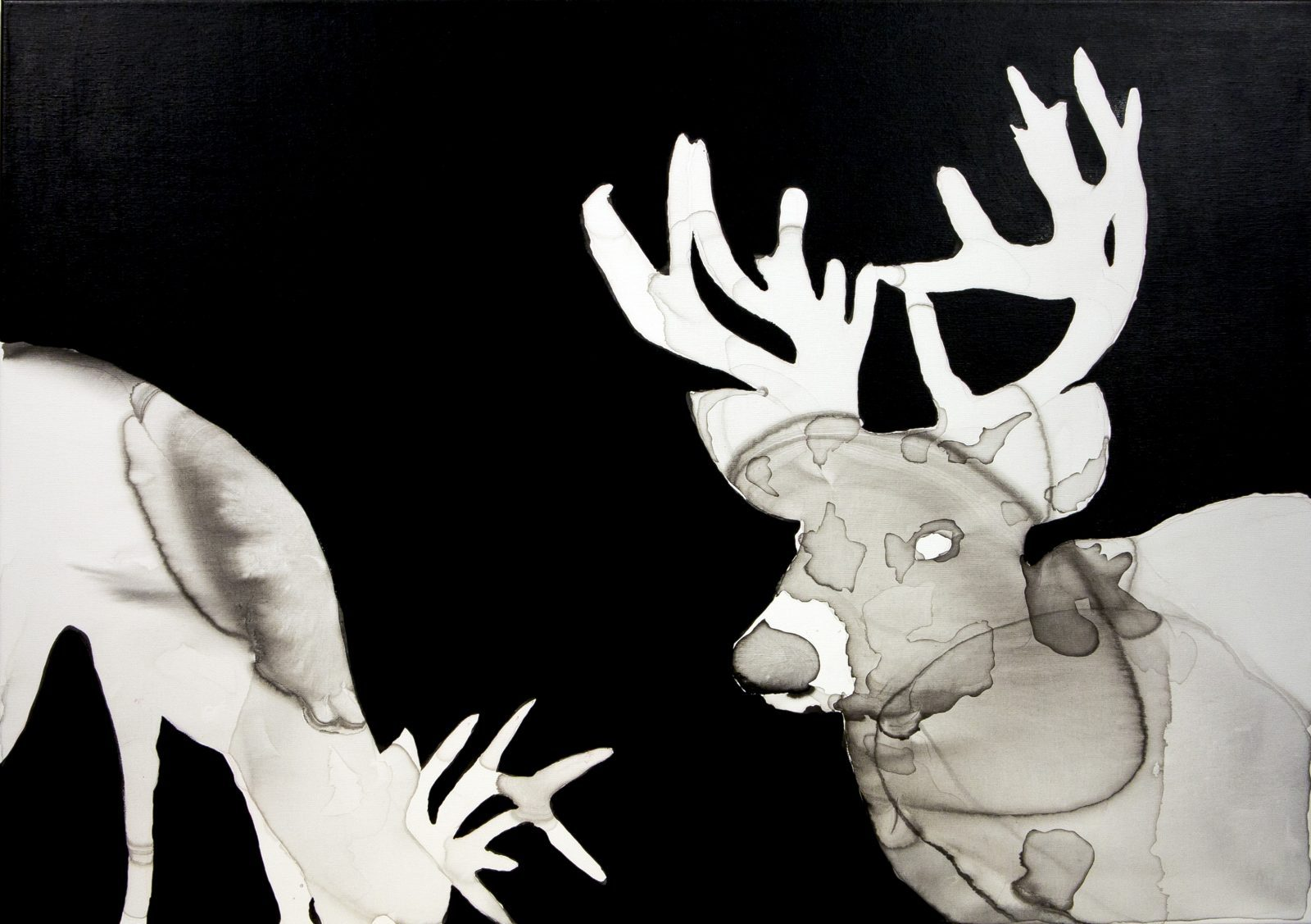 Anna Nemes: Deers at Night