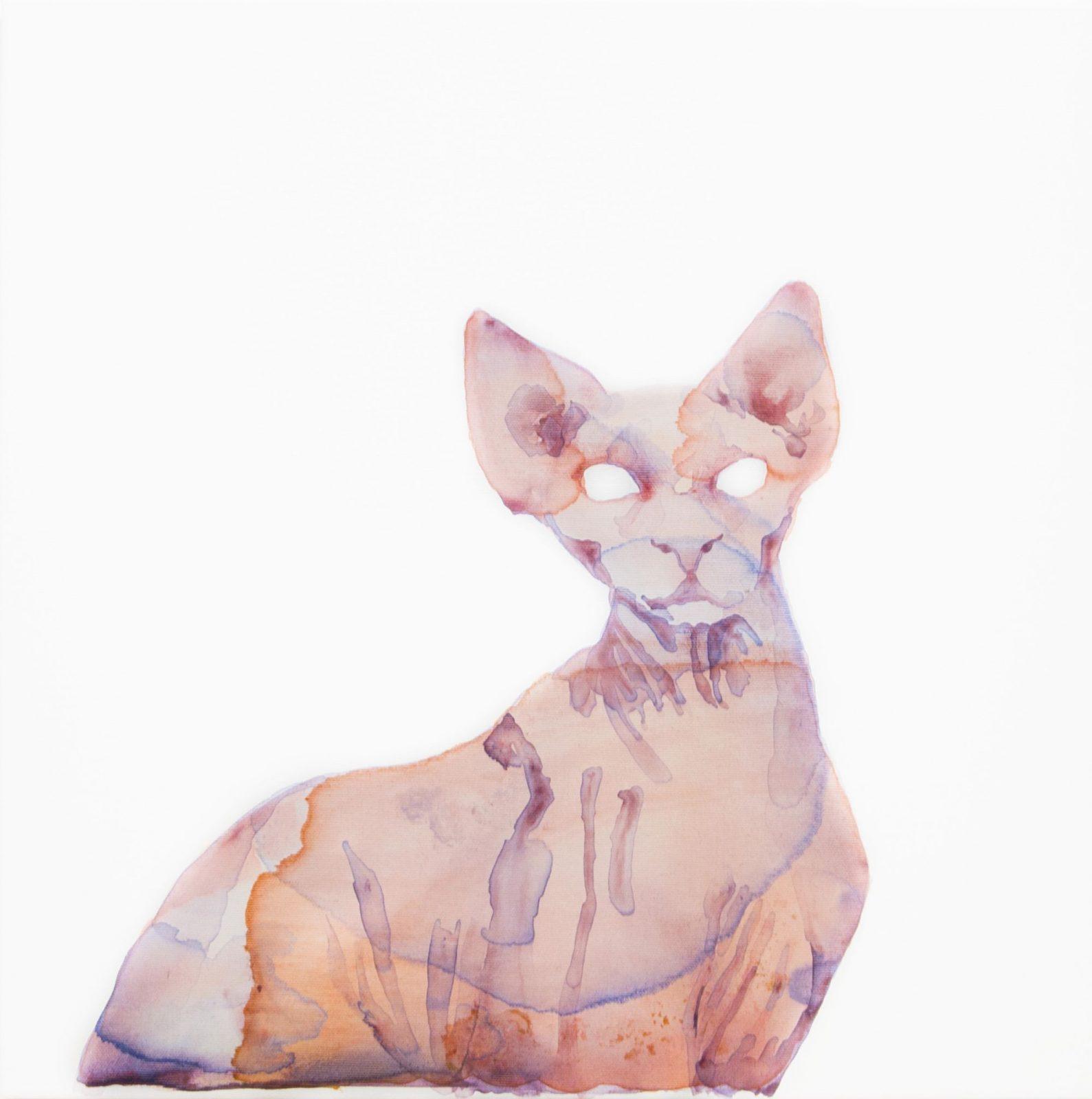 Nemes Anna: Bambino Cat