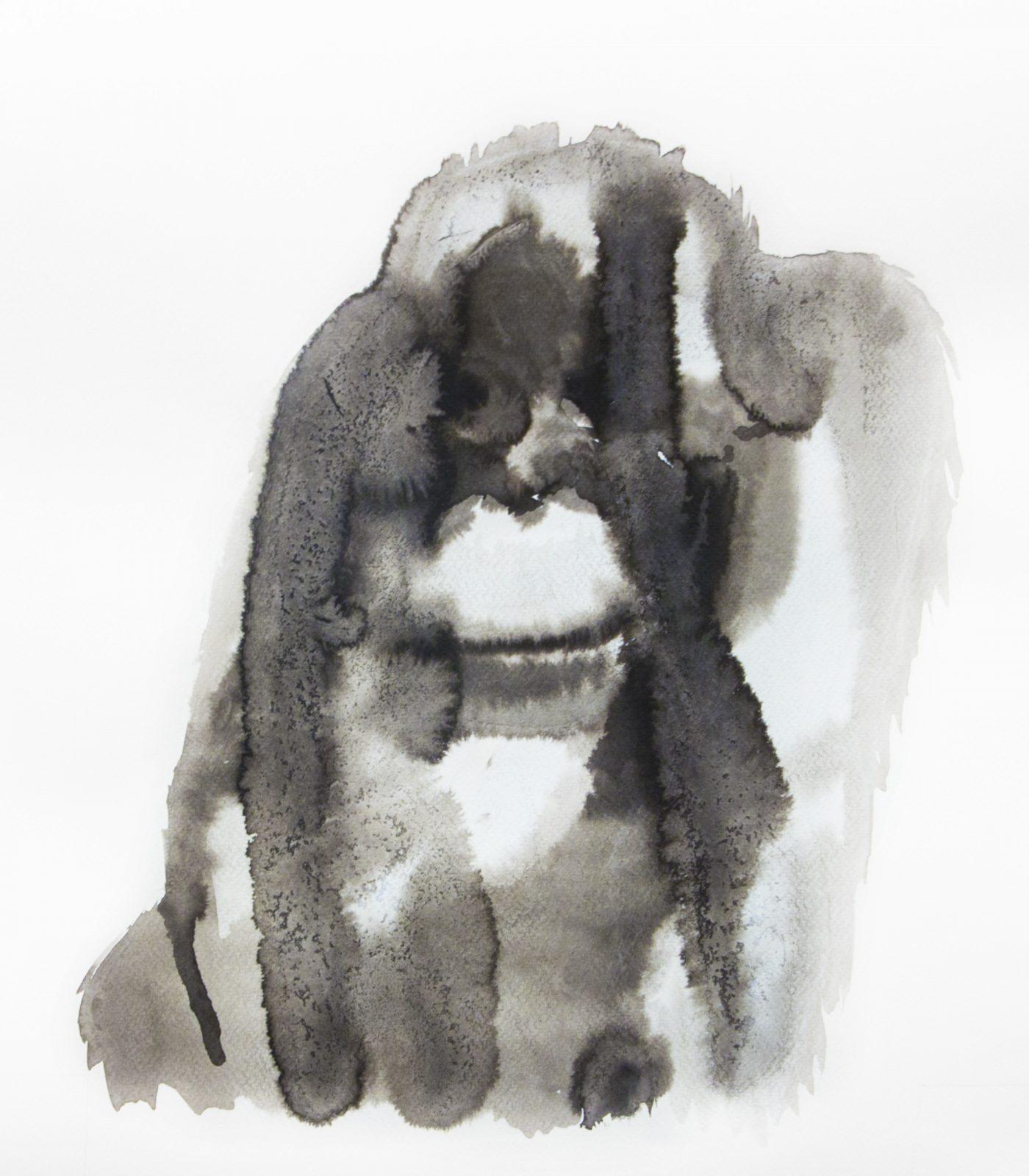 Nemes Anna: Orangután