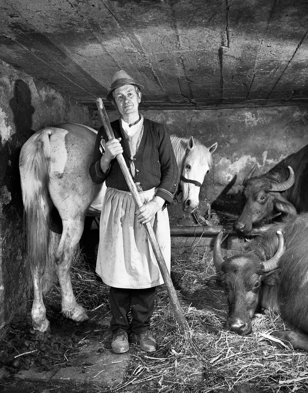 Péter Korniss: Farmer in his Stable