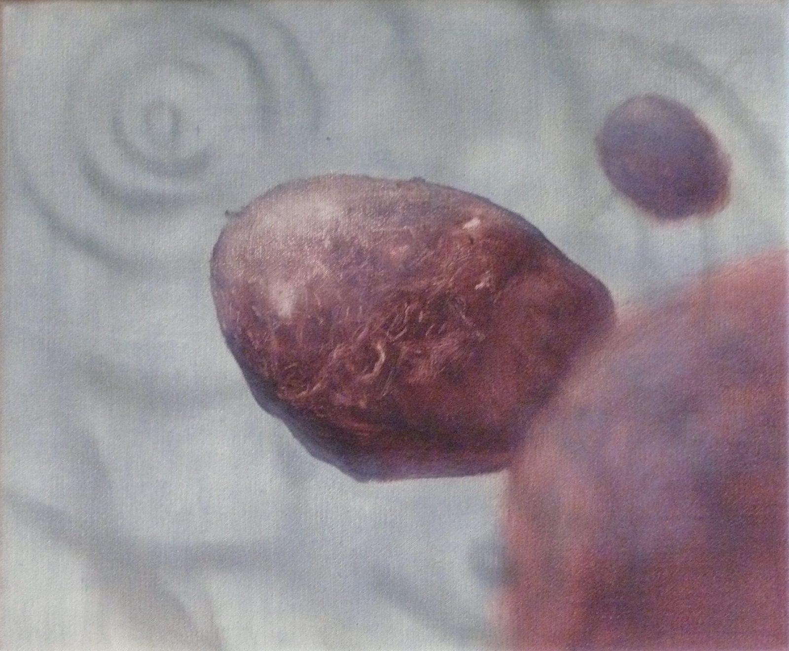 Herman Levente: Andrej pityókái 1