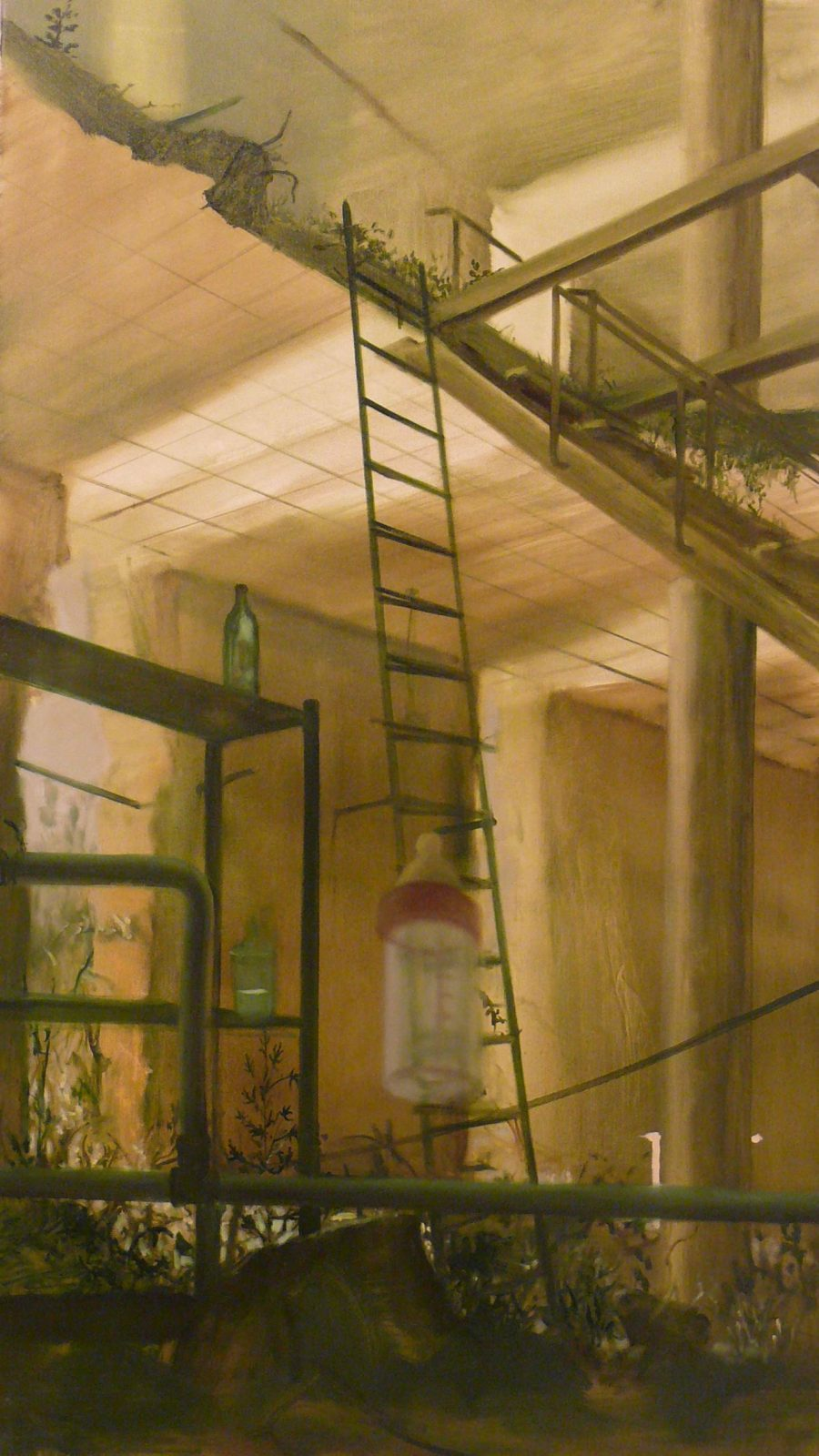 Herman Levente: Zóna 15 – Emelkedő