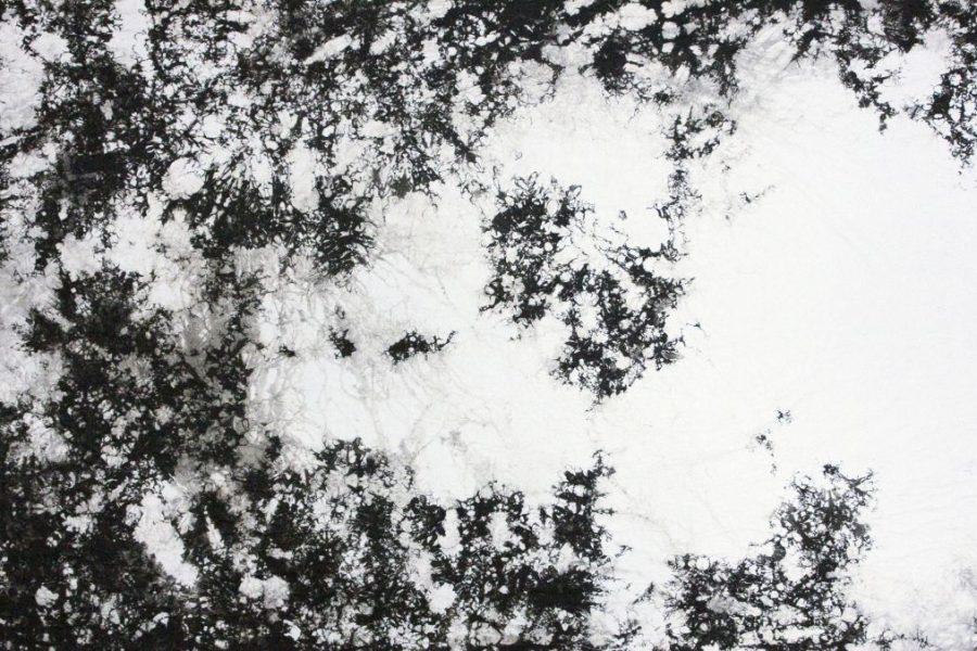 Dobokay Máté: Hommage a Hantai Simon, 98×217,5 cm