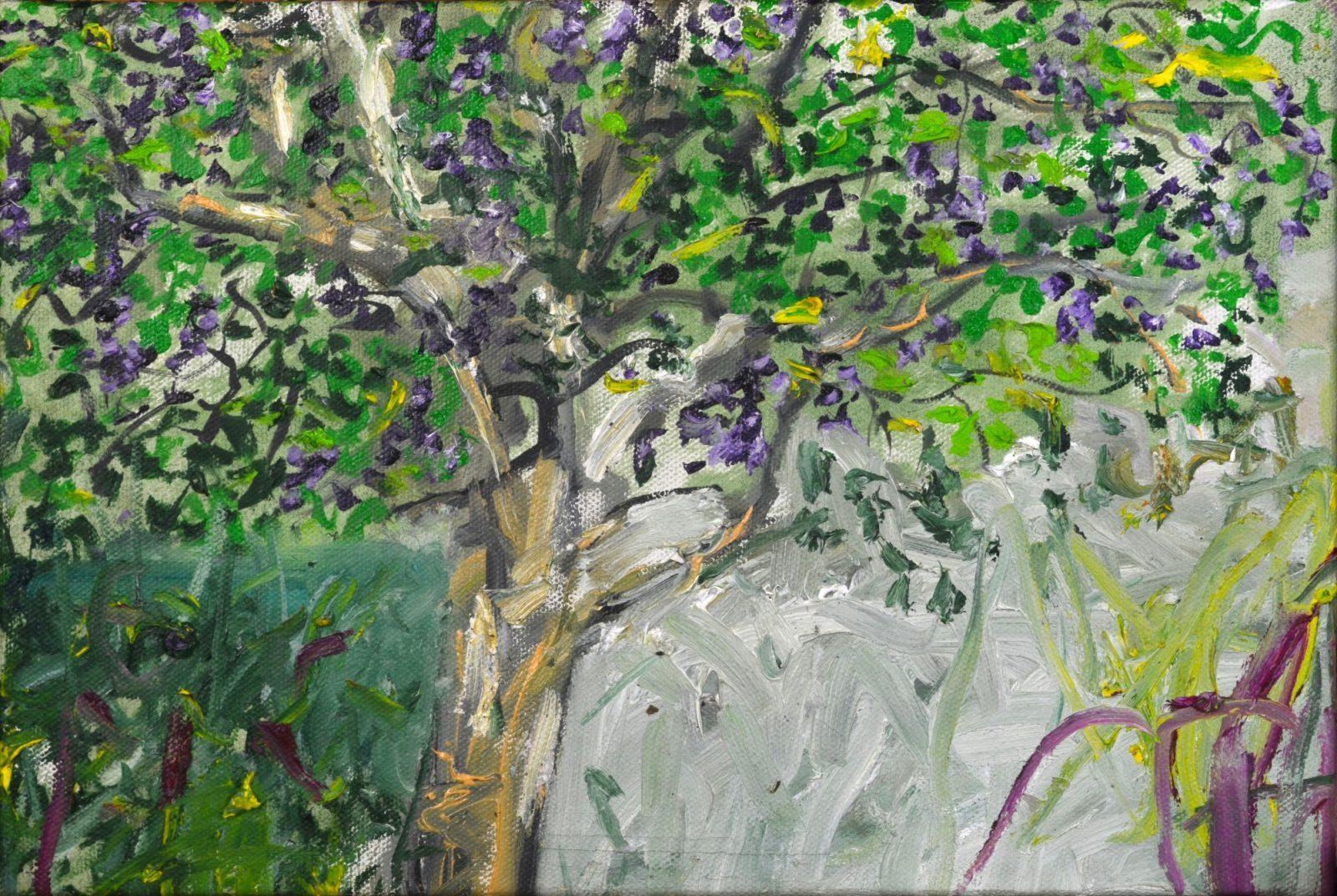 franyo aatoth: Garden Series 10.