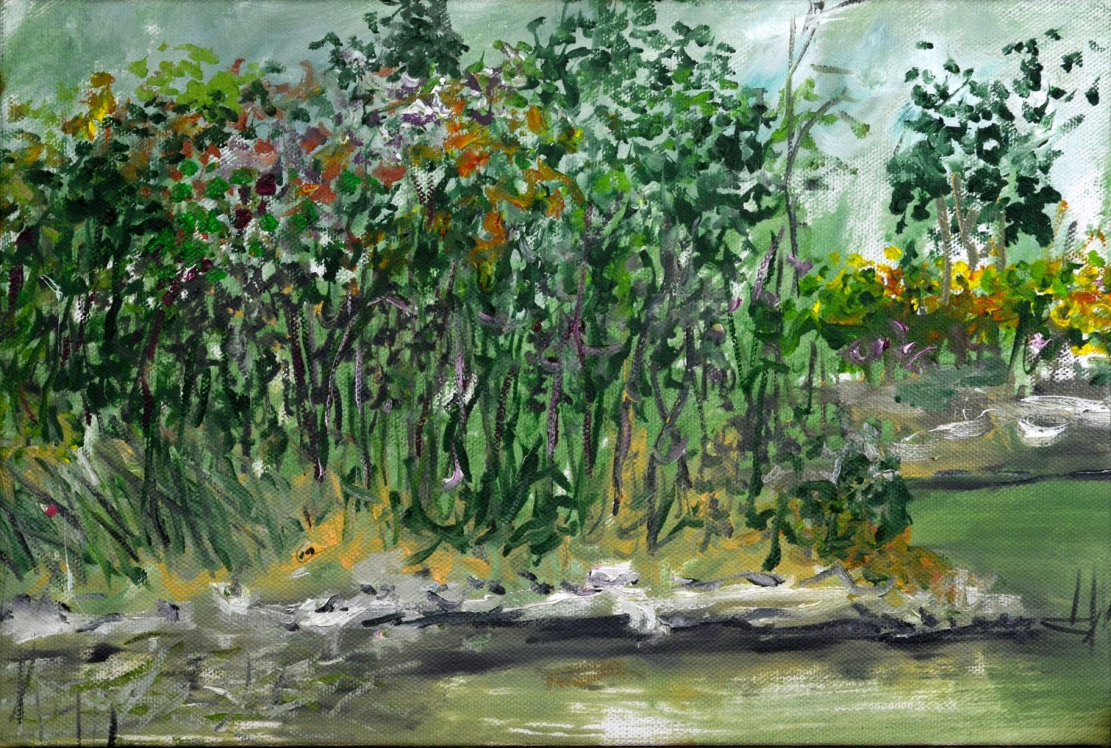 franyo aatoth: Garden Series 16.