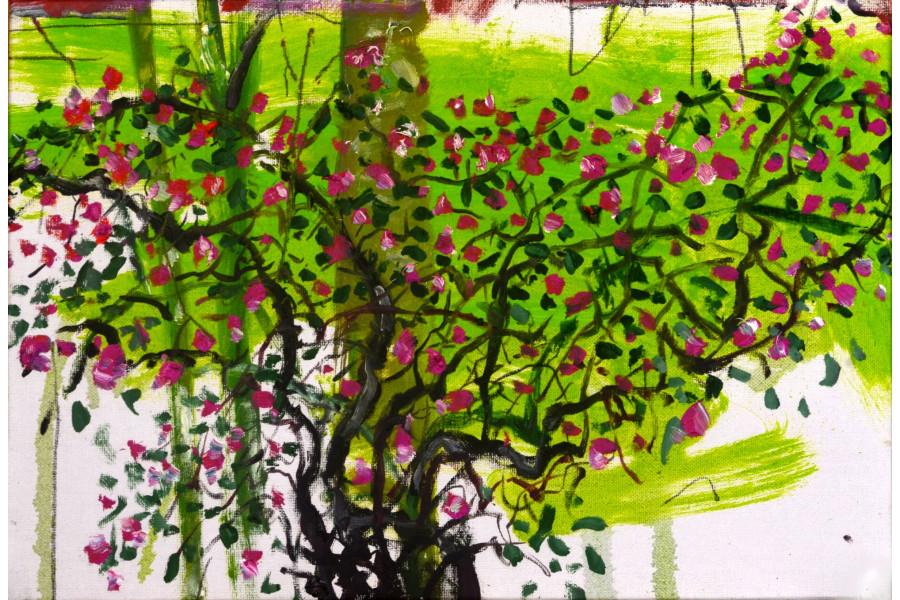 franyo aatoth: Garden Series 35.