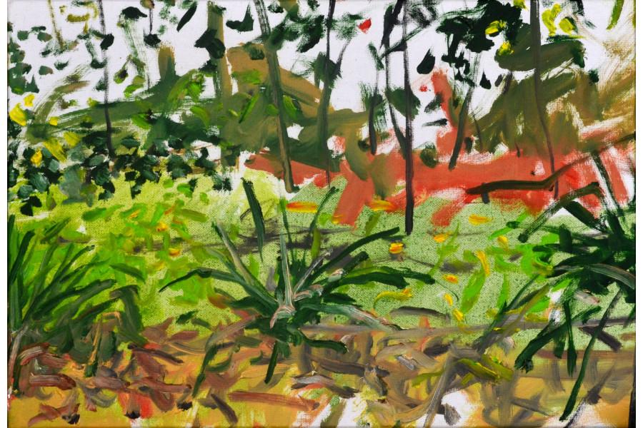 franyo aatoth: Garden Series 37.
