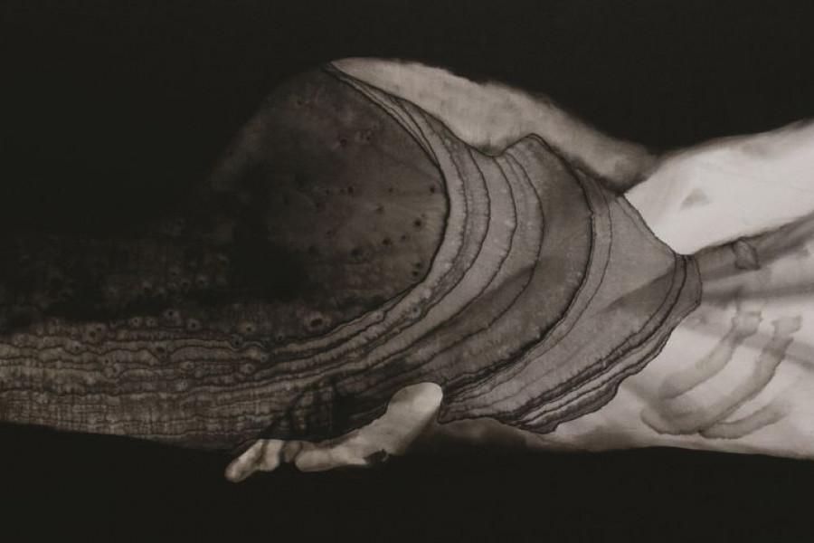 Nemes Anna Belül alszik II.